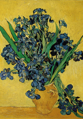 Wooden Jigsaw Puzzle - Blue Irises - 1000 Pieces