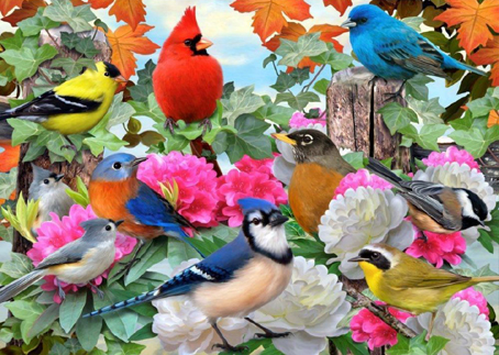 Wooden Jigsaw Puzzle - Birds For All Seasons - 250 Pieces Wentworth