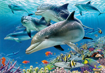 Jigsaw Puzzle - Paradise Under the Sea - 1500 Pieces Educa