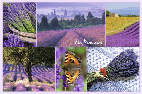 Jigsaw Puzzle - Provence - 3000 Pieces Ravensburger