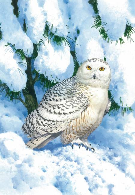 Wooden Jigsaw Puzzle - Winter Camouflage Owl (#731506) - 250 Pieces