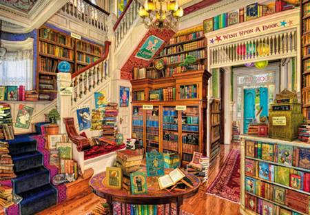 Wooden Jigsaw Puzzle - Wish Upon a Bookshop (#782813) - 250 Pieces