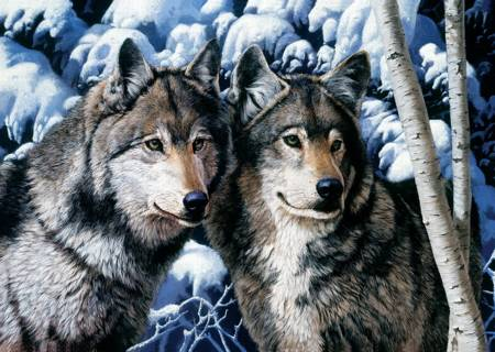 Jigsaw Puzzle - Wolves (10318)