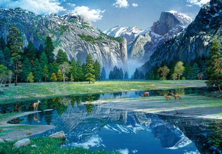 Wooden Jigsaw Puzzle -  Yosemite Spring (#782105) - 500 Pieces